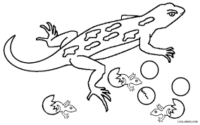 Lizard Coloring Pages - GetColoringPages.com