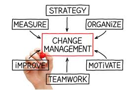 change management assignment help in assignment help change management assignment experts in