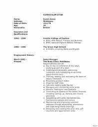 U S Navy Curriculum Vitae Inspirational New Resume Letter Format