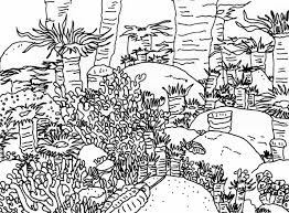 Amazing Coloring Pages Coral Reefs Download Reef Page In Fun Time