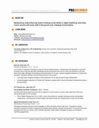 The Muse Resume Templates 100 Unique Marketing Resume Template Resume Writing Tips Resume 41