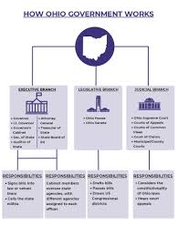 Government Flow Chart U S Government Flowchart Constitutional Law Flowchart Agency