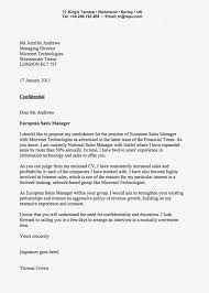 English Cover Letter Curriculum Vitae Template Resume Impression