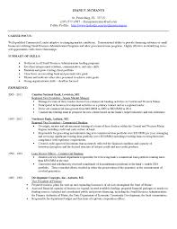 Profile On A Resume Example Business Representative Sample Entry