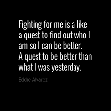 Mma Quotes Delectable Motivational Quotes UFC MMA Quotes