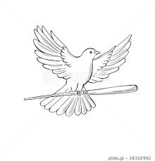 イラスト 鳥 正面 飛ぶの写真素材 Pixta