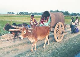 Image result for bullock cart used for travel by families in INDIA