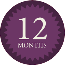 12 month a 12 month checklist to blogging success serebrin partners