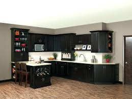 E Merillat Cabinet Colors Gallery Of Kitchen Replacement Doors  Rate Cabinets Basics Prices