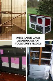 diy rabbit cages and hutches for your fluffy friends cover