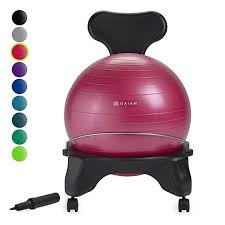 The 10 Best Yoga Exercise Ball Chair In 2019 Pink Pig