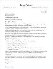 Sales Sample Cover Letter Sales Executive Cover Letter Sample