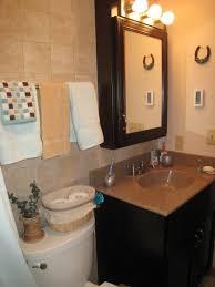 Brown Painted Bathrooms Bathroom Modern Concepts Los Angeles Bathroom Remodeling Bathroom
