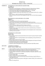 Big Data Sample Resume Senior Big Data Developer Resume Samples Velvet Jobs 10