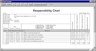 Roles And Responsibility Template Roles And
