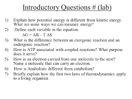 introductory questions lab