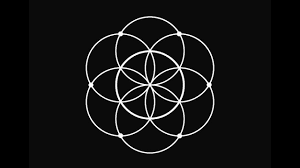 the seed of life symbol of the day 39