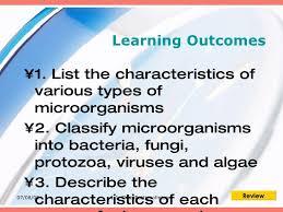 1 1 Classsification Of Microorganisms