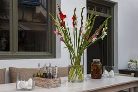 A tall cylindrical vase filled with tall gladiolas in white, pink, and red  makes