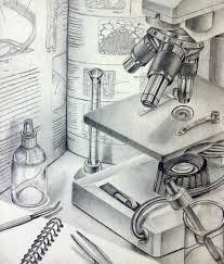 microscope still life drawing