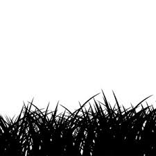tall grass silhouette. Contemporary Tall Free Vector Grass And Tall Grass Silhouette
