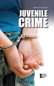 juvenile crime opposing viewpoints louise i gerdes juvenile crime opposing viewpoints louise i gerdes 9780737757316 com books