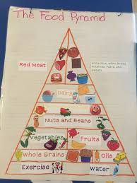 What Is Food Pyramid Chart Food Pyramid Anchor Chart My Students Helped To Create This