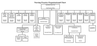 Canon Organizational Chart Organizational Chart Nursing At Strong Memorial Hospital