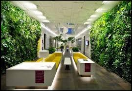 office garden design. Office Garden Design S