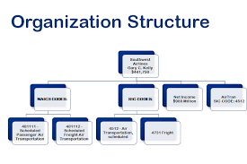 Southwest Airlines Organization Chart Organizational Structure Analysis For Southwest Airlines Co