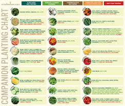 Planting Dates Chart Companion Planting Chart For Vegetables
