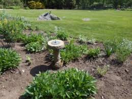 Small Picture jumbo waterwise pre planned garden high country gardens cutting
