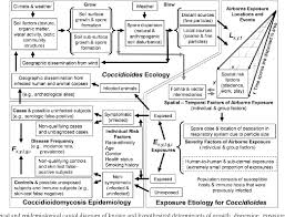 Epidemiological Study Designs Figure 1 From Landscape Epidemiological Study Design To