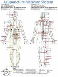 Chinese Meridian Chart Pdf Acupuncture Points Map
