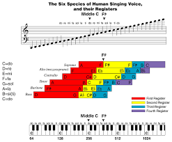 12 Ways To Increase Your Vocal Range Vocal Tips