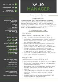 Sales Executive Sample Resume Sales Manager Resume Sample Writing Tips Resume Genius