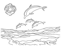 Dolphin Coloring Pages For Adults At Getdrawingscom Free For