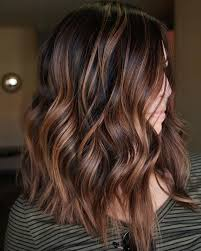 Light Brown With Caramel Highlights Coolest Ideas About Dark Brown Hair With Caramel Highlights 2019
