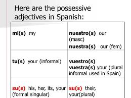 Possessive Adjectives Ppt Video Online Download
