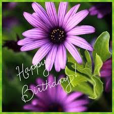 Happy Birthday Gifs Pinterest Happy Birthday Quotes Birthday