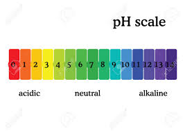 Color Chart For Universal Indicator Ph Scale Diagram With Corresponding Acidic Or Alcaline Values