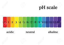 Ph Scale Diagram With Corresponding Acidic Or Alcaline Values