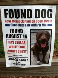 how to make lost dog flyers found dog flyer template under fontanacountryinn com