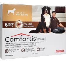 comfortis for dogs. Wonderful Comfortis Throughout Comfortis For Dogs