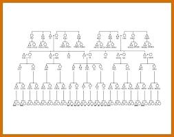 Anthropology Kinship Chart Kinship Chart Template Bookmylook Co