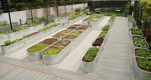 20 raised bed garden ideas design