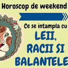 horoscop zodia rac azi