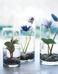 Terrace and Garden: Lily Pond In Vases - DIY Indoor Garden