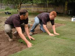 Diy Sod How To Remove Old Sod And Lay New Sod How Tos Diy