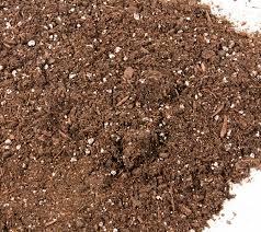 raised bed garden soil box garden mix